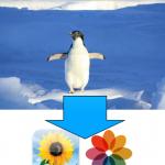 iOS シミュレーターに写真を追加する方法